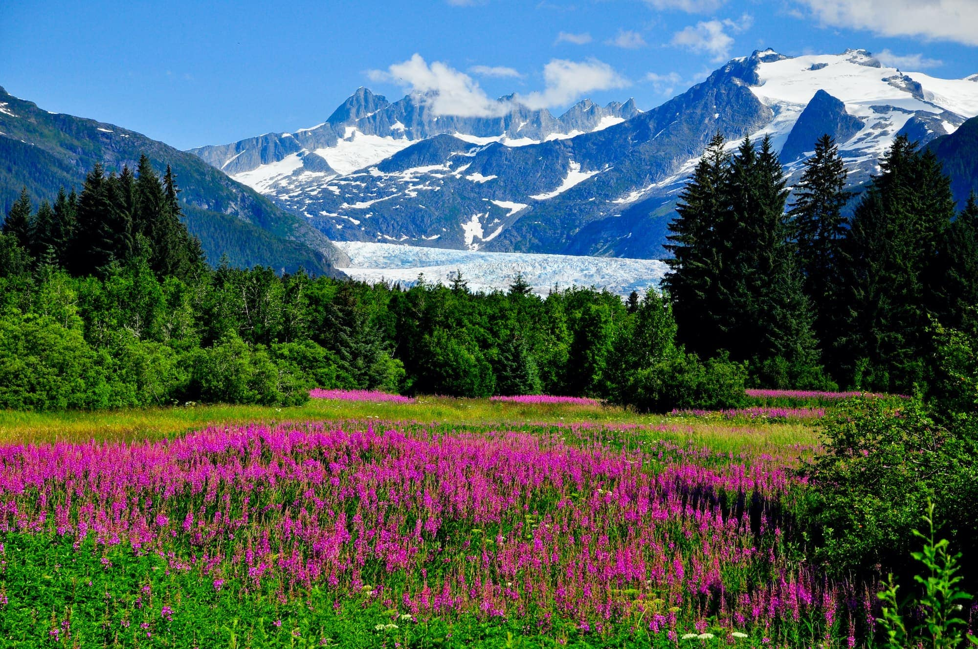 What Is The Best Time Of Year to Visit Alaska?